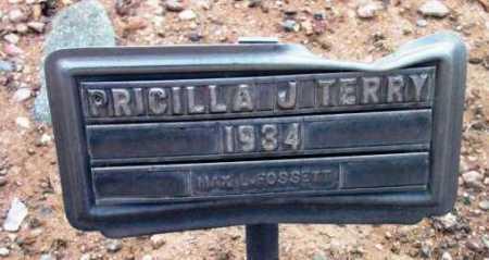TERRY, PRICILLA JANE - Yavapai County, Arizona | PRICILLA JANE TERRY - Arizona Gravestone Photos