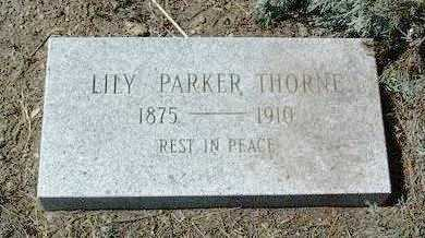 THORNE, LILY - Yavapai County, Arizona | LILY THORNE - Arizona Gravestone Photos
