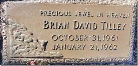 TILLEY, BRIAN DAVID - Yavapai County, Arizona | BRIAN DAVID TILLEY - Arizona Gravestone Photos