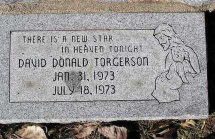 TORGERSON, DAVID DONALD - Yavapai County, Arizona | DAVID DONALD TORGERSON - Arizona Gravestone Photos