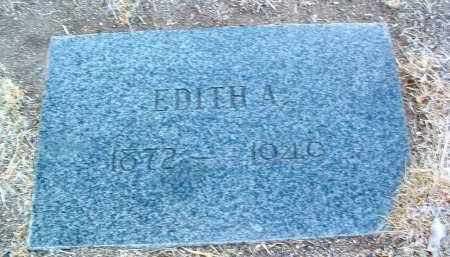 JOHNS TRENGOVE, EDITH - Yavapai County, Arizona | EDITH JOHNS TRENGOVE - Arizona Gravestone Photos