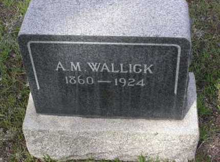 WALLICK, A. M. - Yavapai County, Arizona | A. M. WALLICK - Arizona Gravestone Photos