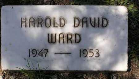 WARD, HAROLD DAVID - Yavapai County, Arizona | HAROLD DAVID WARD - Arizona Gravestone Photos