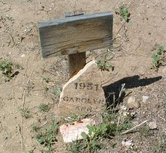 WEBB, CAROLYN ANN - Yavapai County, Arizona | CAROLYN ANN WEBB - Arizona Gravestone Photos
