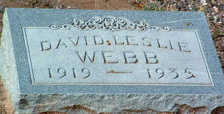 WEBB, DAVID LESLIE - Yavapai County, Arizona | DAVID LESLIE WEBB - Arizona Gravestone Photos