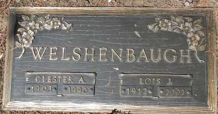 WELSHENBAUGH, LOIS J. - Yavapai County, Arizona | LOIS J. WELSHENBAUGH - Arizona Gravestone Photos