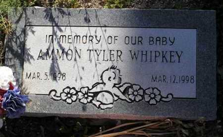 WHIPKEY, AMMON TYLER - Yavapai County, Arizona | AMMON TYLER WHIPKEY - Arizona Gravestone Photos