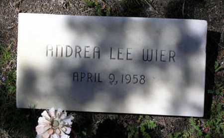WIER, ANDREA LEE - Yavapai County, Arizona | ANDREA LEE WIER - Arizona Gravestone Photos