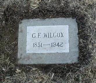 WILCOX, C. F. - Yavapai County, Arizona | C. F. WILCOX - Arizona Gravestone Photos