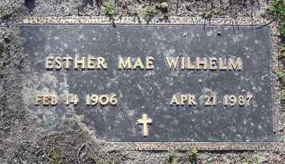 MORRISON WILHELM, E. - Yavapai County, Arizona | E. MORRISON WILHELM - Arizona Gravestone Photos