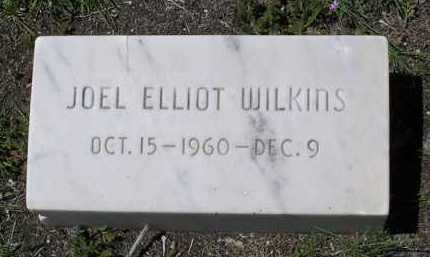 WILKINS, JOEL ELLIOT - Yavapai County, Arizona | JOEL ELLIOT WILKINS - Arizona Gravestone Photos