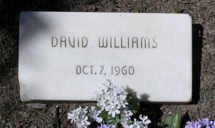 WILLIAMS, DAVID - Yavapai County, Arizona   DAVID WILLIAMS - Arizona Gravestone Photos