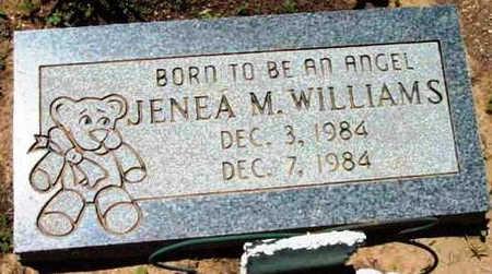 WILLIAMS, JENNA M. - Yavapai County, Arizona | JENNA M. WILLIAMS - Arizona Gravestone Photos