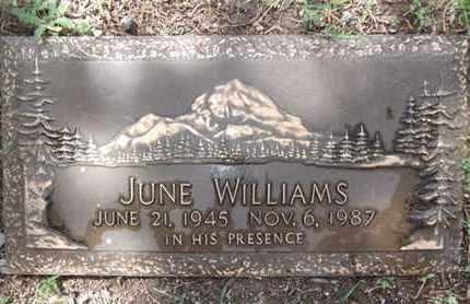 APEGIAN WILLIAMS, JUNE L. - Yavapai County, Arizona | JUNE L. APEGIAN WILLIAMS - Arizona Gravestone Photos