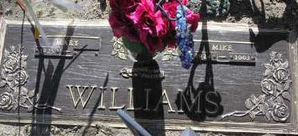 WILLIAMS, MARY LOUISE - Yavapai County, Arizona | MARY LOUISE WILLIAMS - Arizona Gravestone Photos