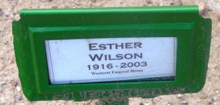 WILSON, ESTHER RUTH - Yavapai County, Arizona | ESTHER RUTH WILSON - Arizona Gravestone Photos