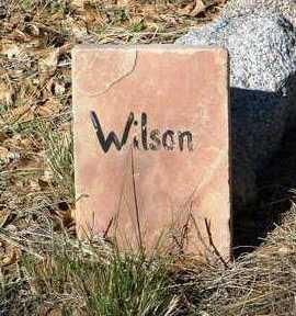 WILSON, UNKNOWN - Yavapai County, Arizona | UNKNOWN WILSON - Arizona Gravestone Photos