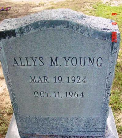 YOUNG, ALLYS M. - Yavapai County, Arizona | ALLYS M. YOUNG - Arizona Gravestone Photos