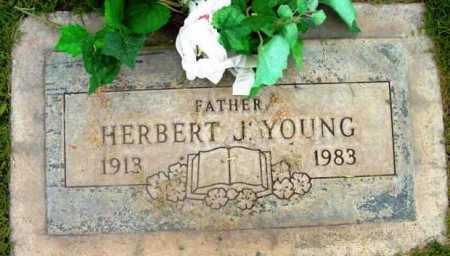YOUNG, HERBERT J. - Yavapai County, Arizona | HERBERT J. YOUNG - Arizona Gravestone Photos