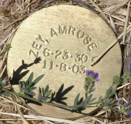 ZEY, AMROSE C. - Yavapai County, Arizona   AMROSE C. ZEY - Arizona Gravestone Photos