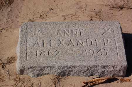 ALEXANDER, ANNA - Yuma County, Arizona | ANNA ALEXANDER - Arizona Gravestone Photos