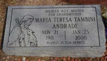 ANDRADE, MARA TERESA - Pima County, Arizona | MARA TERESA ANDRADE - Arizona Gravestone Photos