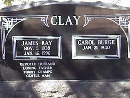 CLAY, CAROL BURGE - Pima County, Arizona | CAROL BURGE CLAY - Arizona Gravestone Photos