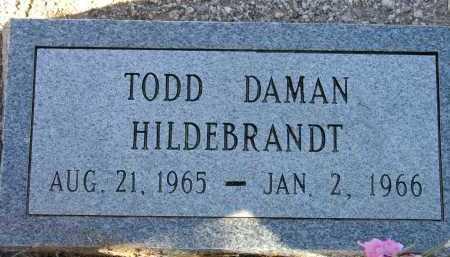 HILDEBRANDT, TODD DAMON - Pima County, Arizona | TODD DAMON HILDEBRANDT - Arizona Gravestone Photos