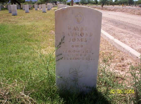 JONES, WAYNE - Pima County, Arizona | WAYNE JONES - Arizona Gravestone Photos