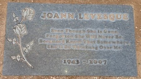 LEVESQUE, JOANN - Pima County, Arizona | JOANN LEVESQUE - Arizona Gravestone Photos
