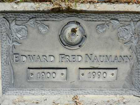 NAUMANN, EDWARD FRED - Pima County, Arizona | EDWARD FRED NAUMANN - Arizona Gravestone Photos