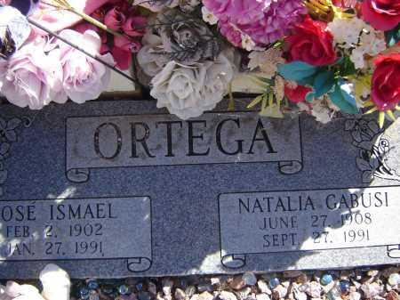 ORTEGA, NATALIA GABUSI - Pima County, Arizona   NATALIA GABUSI ORTEGA - Arizona Gravestone Photos
