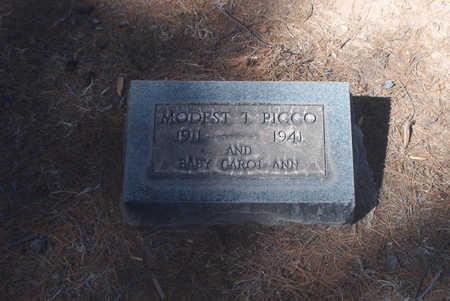 PICCO, CAROL ANN - Pima County, Arizona | CAROL ANN PICCO - Arizona Gravestone Photos