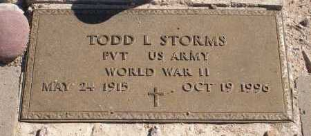 STORMS, TODD L. - Pima County, Arizona | TODD L. STORMS - Arizona Gravestone Photos