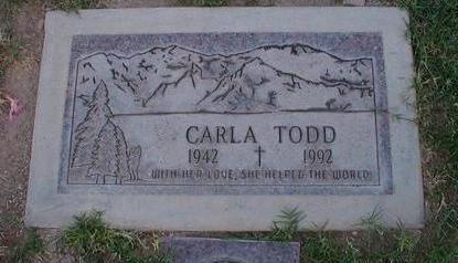 TODD, CARLA - Pima County, Arizona | CARLA TODD - Arizona Gravestone Photos