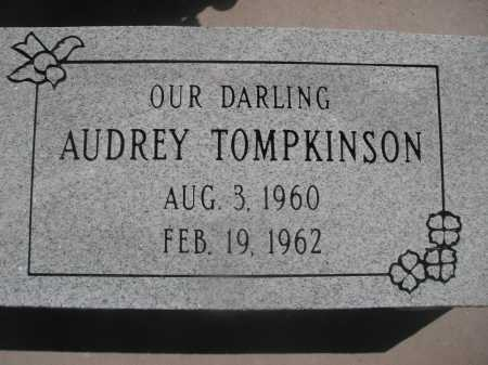 TOMPKINSON, AUDREY - Pima County, Arizona | AUDREY TOMPKINSON - Arizona Gravestone Photos