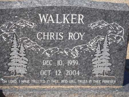 WALTER, CHRIS ROY - Pima County, Arizona   CHRIS ROY WALTER - Arizona Gravestone Photos