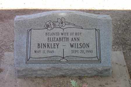 BINKLEY WILSON, ELIZABETH ANN - Pima County, Arizona | ELIZABETH ANN BINKLEY WILSON - Arizona Gravestone Photos