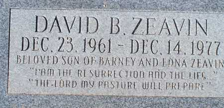 ZEAVIN, DAVID B. - Pima County, Arizona | DAVID B. ZEAVIN - Arizona Gravestone Photos