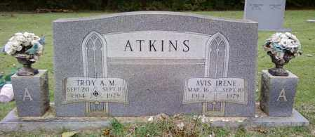ATKINS, TROY A M - Cleveland County, Arkansas | TROY A M ATKINS - Arkansas Gravestone Photos