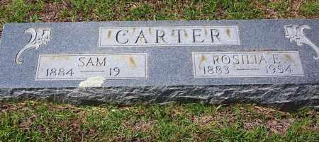CARTER, ROSILIA E - Cleveland County, Arkansas | ROSILIA E CARTER - Arkansas Gravestone Photos