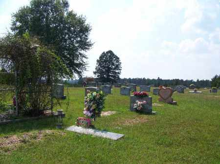 *GARNER, CEMETERY OVERVIEW - Cleveland County, Arkansas   CEMETERY OVERVIEW *GARNER - Arkansas Gravestone Photos