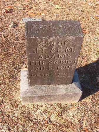 ADAMS, CARLTON - Columbia County, Arkansas | CARLTON ADAMS - Arkansas Gravestone Photos