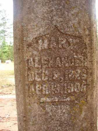 ALEXANDER, MARY - Columbia County, Arkansas | MARY ALEXANDER - Arkansas Gravestone Photos