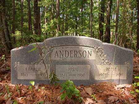 ANDERSON, JOSIE - Columbia County, Arkansas | JOSIE ANDERSON - Arkansas Gravestone Photos