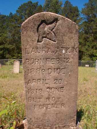 ATKIN, LAURA - Columbia County, Arkansas | LAURA ATKIN - Arkansas Gravestone Photos