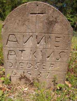 ATKINS, ANNIE - Columbia County, Arkansas | ANNIE ATKINS - Arkansas Gravestone Photos