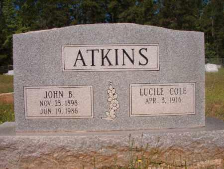 ATKINS, JOHN B - Columbia County, Arkansas | JOHN B ATKINS - Arkansas Gravestone Photos