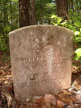 BANKS, THEODORE R - Columbia County, Arkansas | THEODORE R BANKS - Arkansas Gravestone Photos