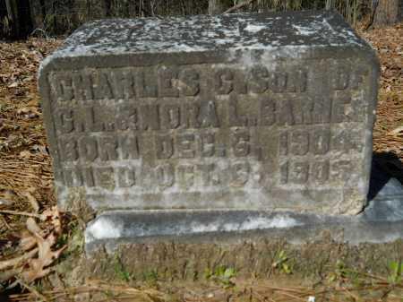 BARNES, CHARLES  C - Columbia County, Arkansas | CHARLES  C BARNES - Arkansas Gravestone Photos